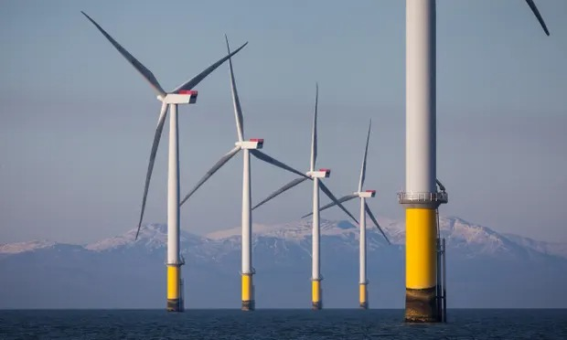 Queen's property chief delays sale of Scottish seabed windfarm plots